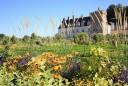 Loire mentén kastélyok és szőlők között - Light