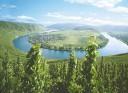 Rizling túra a Mosel-folyó mentén